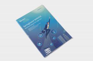 Springboard Service e-book cover